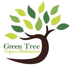 green tree meditation a donation based studio in south