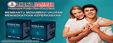 hammer of thor wanita klinikobatindonesia com agen resmi vimax