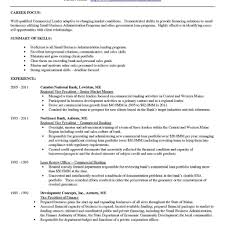 corporate resume format personal banker resume professional objectivep exles business