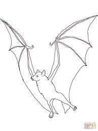 flying fox bat coloring page print download animal free