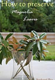 magnolia leaf wreath how to preserve magnolia leaves diy magnolia wreath hometalk