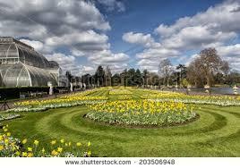 london march 25 kew gardens on stock photo 203506948 shutterstock