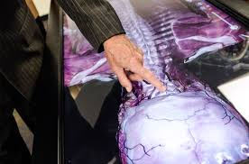Human Anatomy And Physiology Case Studies Case Studies Anatomage