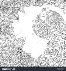 printable coloring page adults peacock leaves stock vector