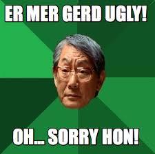 Er Mer Gerd Meme - meme creator er mer gerd ugly oh sorry hon meme generator