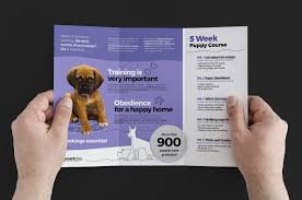 tri fold school brochure template puppy school trifold brochure template for photoshop illustrator