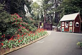 Botanic Gardens Hobart Laughter At The Hobart Botanical Gardens Think Tasmania