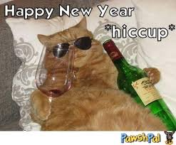 Happy New Year Cat Meme - funny new year cat memes new best of the funny meme