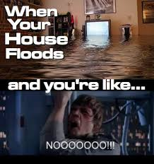 Flooded Basement Meme - 7 best funny water damage memes images on pinterest water damage