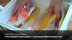 fresh fish home delivery youtube fresh fish home delivery