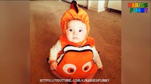 cute halloween costumes for little boys cute nemo halloween costumes for kids funny kids videos youtube