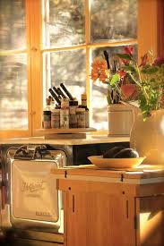 Tiny House Kitchen Designs 392 Best Tiny House Kitchens Images On Pinterest Tiny House