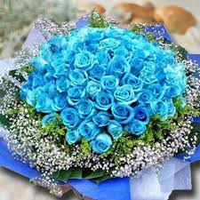 Blue Roses 99 Blue Roses In Singapore Gift 99 Blue Roses Ferns N Petals