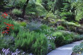 hillside backyard landscaping ideas creating hillside