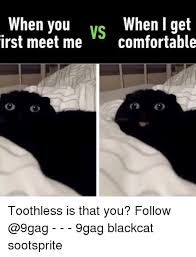 Toothless Meme - 25 best memes about toothless toothless memes