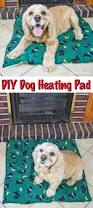best 25 heated dog bed ideas on pinterest heated dog house dog