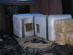 FACE Low Cost Spay Neuter ClinicOutdoor Cat Shelters FACE Low