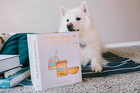 american eskimo dog giving birth a doggone great announcement families weddings