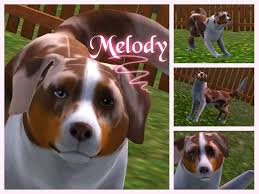 sims 3 australian shepherd melody by marblecat04 on deviantart