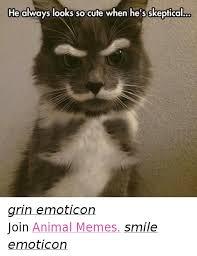 Emoticon Memes - 25 best memes about animal memes animal memes