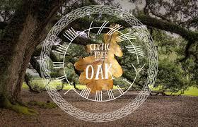 oak celtic tree calendar month 7 spirit