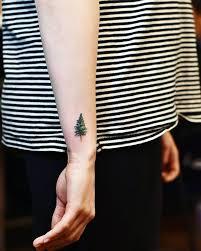 best 25 pine tree ideas on tree tattoos