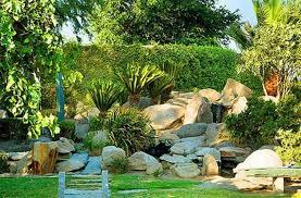 rock garden with shrubs build a beautiful rock garden