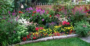Raleigh Botanical Garden Flowers Annuals Perennials Norwood Road Garden