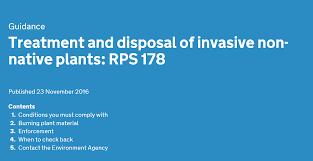 invasive non native plants treatment and disposal of invasive non native plants andrew t