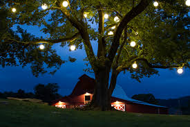 Outdoor Hanging Lights For Trees Outdoor String And Festive Lighting Outdoor Lighting Perspectives