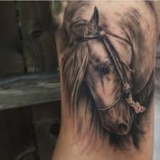 tattoo pictures horse 212 best horse tattoos images on pinterest horses horse and horse