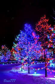 Amish Christmas Lights Beautiful Snow Scenes At Christmas Winter Scene Christmas