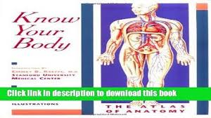 Anatomy Of Human Body Pdf Pdf The Body Clock Guide To Better Health How To Use Your Body S