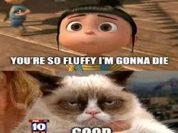Best Grumpy Cat Memes - the best grumpy cat memes on scratch