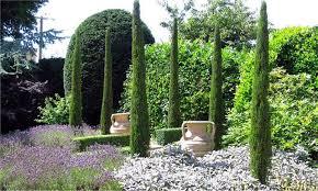 Garden Express Summer Catalogue - of van gogh tuscan totem pole cypress trees cupressus