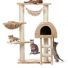 30 best toys for cats images on toys for cats cat