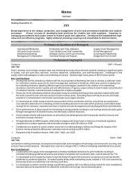 100 catchy resume headlines titles on resume 28 images title
