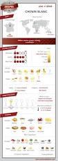 illustrated grape vine training methods grape vines wine and