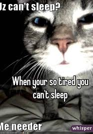 Can T Sleep Meme - your so tired you can t sleep