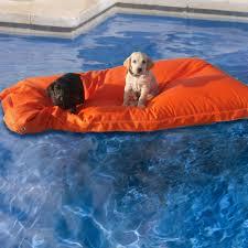 kai pet pool floats the green head