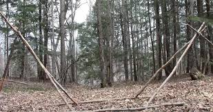 Forest Canopy Bed Make A Durable And Simple Bushcraft Canopy Bed U2013 101 Ways To Survive