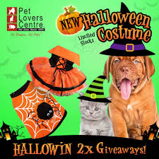 13 20 oct 2016 pet lovers centre halloween contest freebies