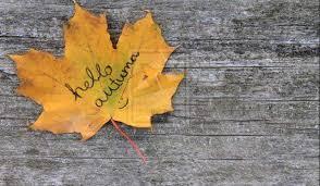 Autumn Memes - autumnal equinox 2015 wednesday september 23 on the calendar