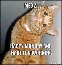 Monday Meme - 20 best memes to start monday the right way sayingimages com