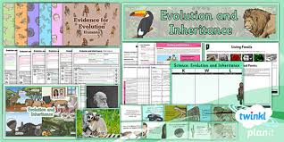 evolution and inheritance year 6 unit pack