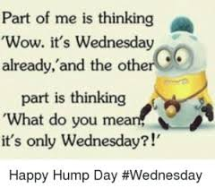 Wednesday Hump Day Meme - image af2d1eff132ec8fe6259edd17f5d90af hump day meme wednesday