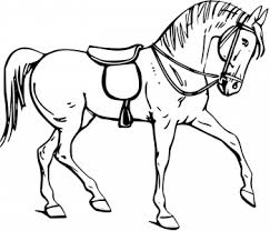 Coloriage cheval blanc  1001 Animaux