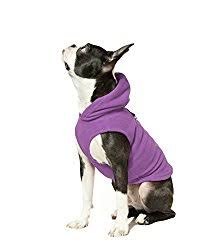 the best sweater for your or puppy american kennel club