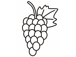 coloring sheet of grapes kids drawing and coloring pages marisa
