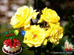 birthday roses for you free flowers ecards greeting cards 123